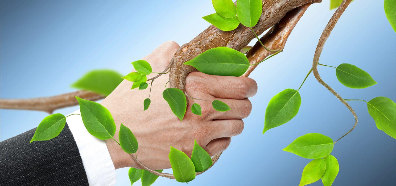 palazzetti-riscaldamento a biomassa sempre più ecologico
